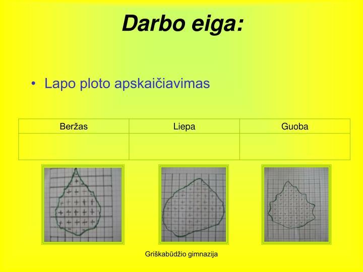 Darbo eiga: