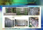 production facility and capability20