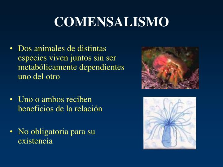 Comensalismo Ejemplos | www.pixshark.com - Images ...