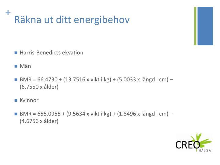 räkna ut energibehov