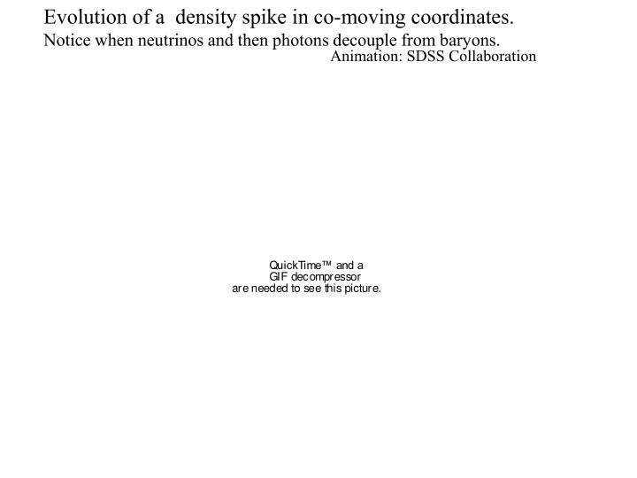 Evolution of a  density spike in co-moving coordinates.