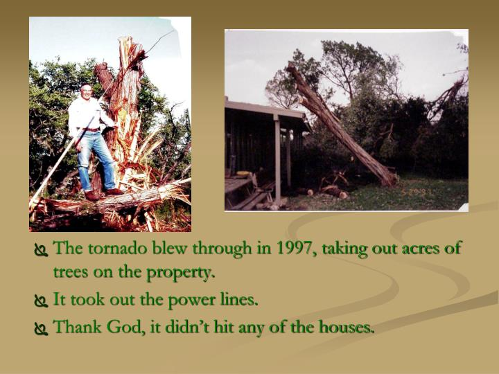 The tornado blew through in 1997, taking out acres of trees on the property.