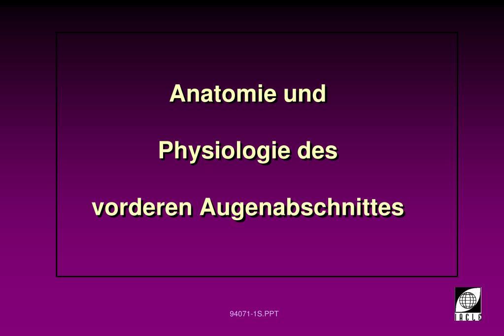 PPT - Anatomie und Physiologie des vorderen Augenabschnittes ...