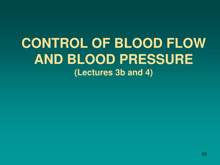 control of blood flow and blood pressure lectures 3b and 4 n.