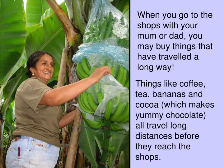 When you go to the shops with your mum or dad, you may buy things that have travelled a long way!
