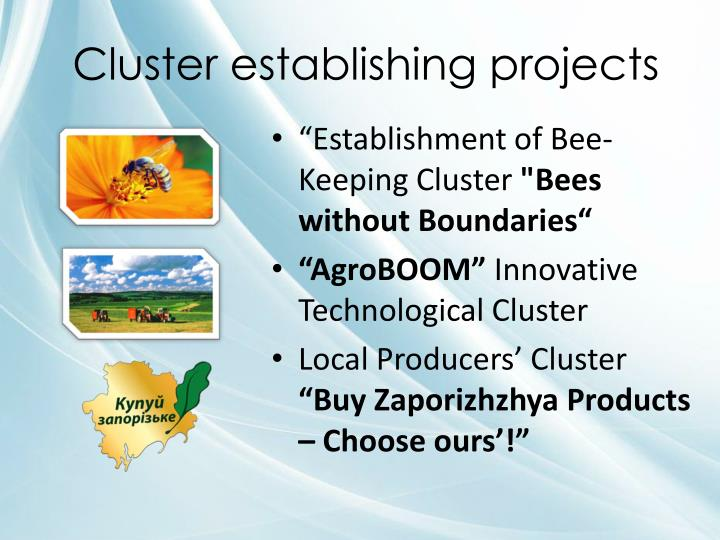 Cluster establishing projects