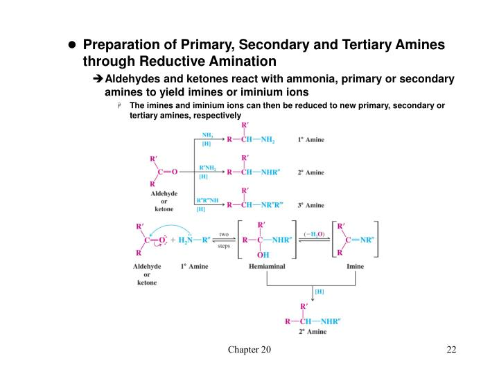 Preparation of Primary, Secondary and Tertiary Amines through Reductive Amination