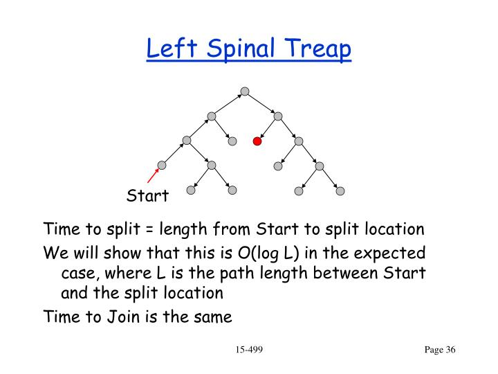 Left Spinal Treap