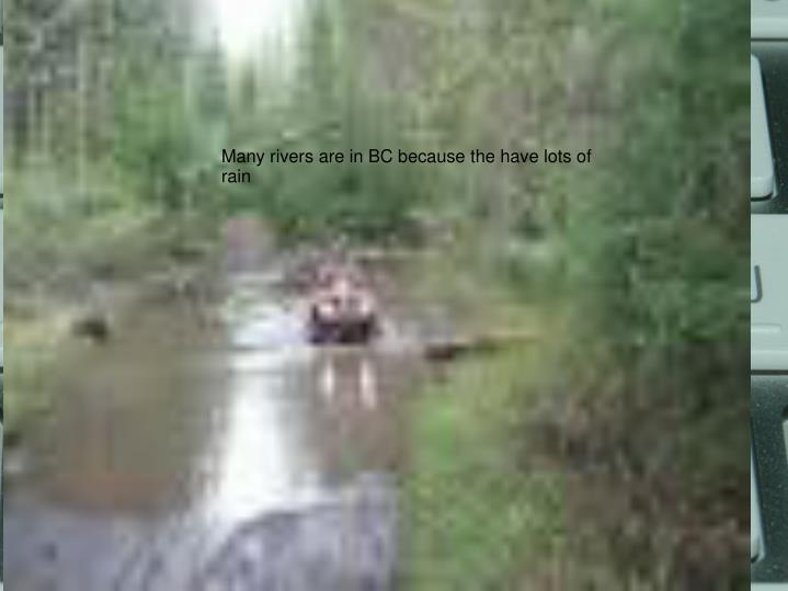 Many rivers are in BC because the have lots of rain