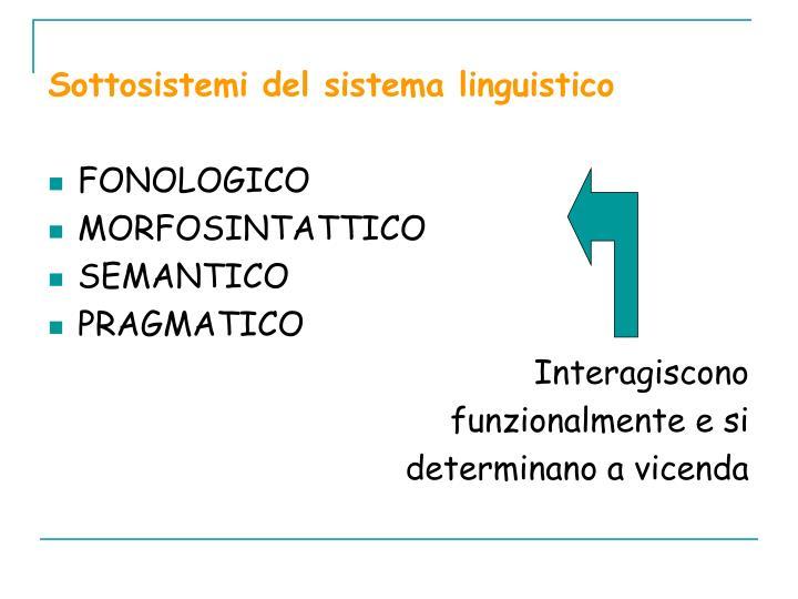 Sottosistemi del sistema linguistico