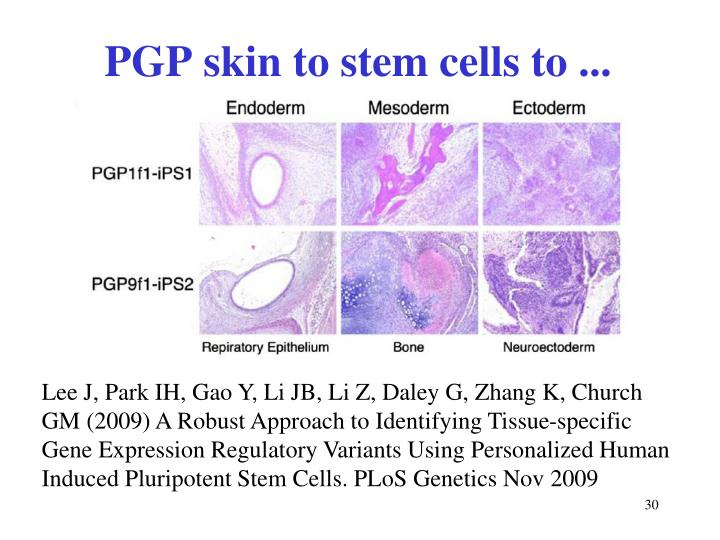 PGP skin to stem cells to ...