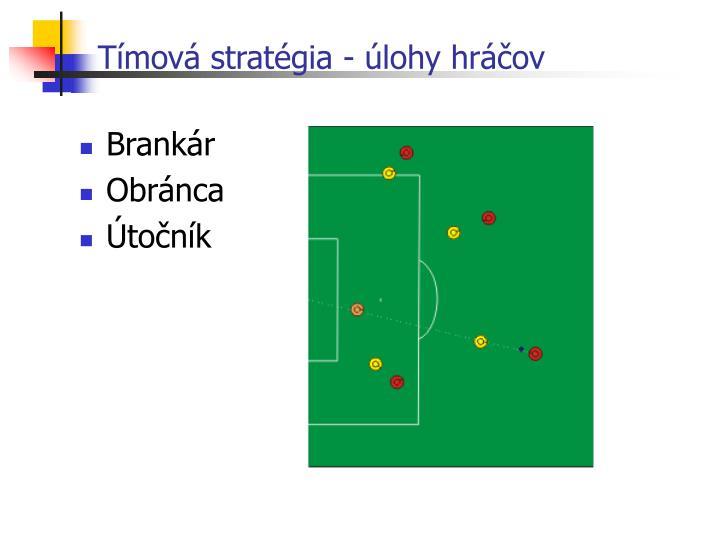 Tímová stratégia - úlohy hráčov