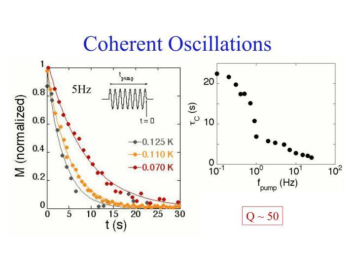 Coherent Oscillations