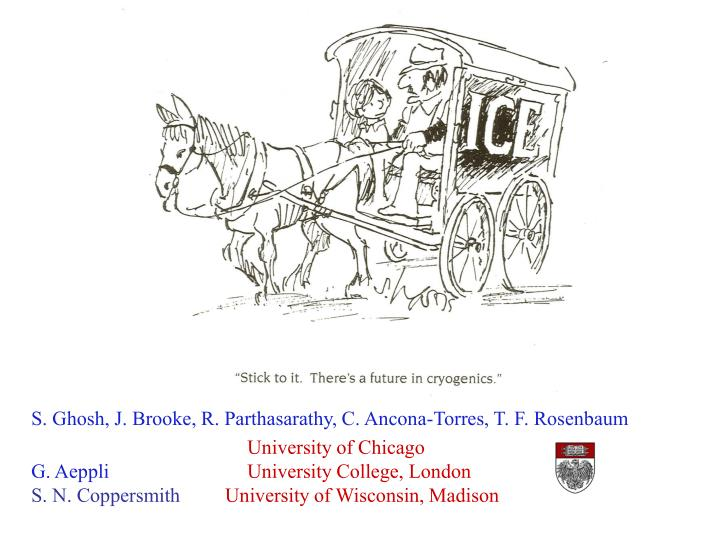 S. Ghosh, J. Brooke, R. Parthasarathy, C. Ancona-Torres, T. F. Rosenbaum