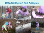 data collection and analysis2