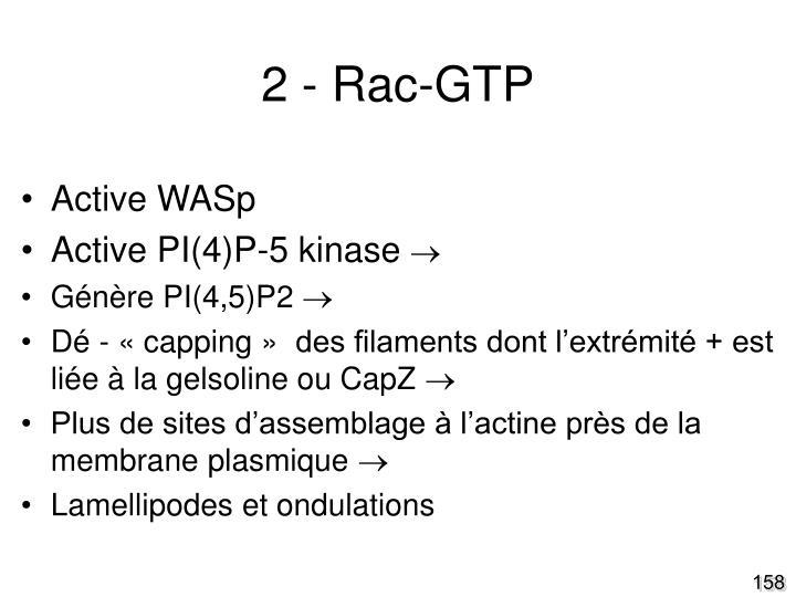 2 - Rac-GTP