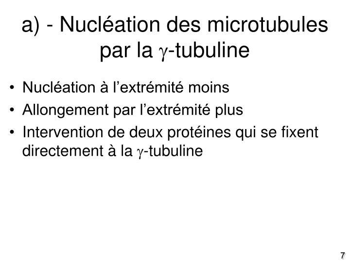 a) - Nucléation des microtubules par la