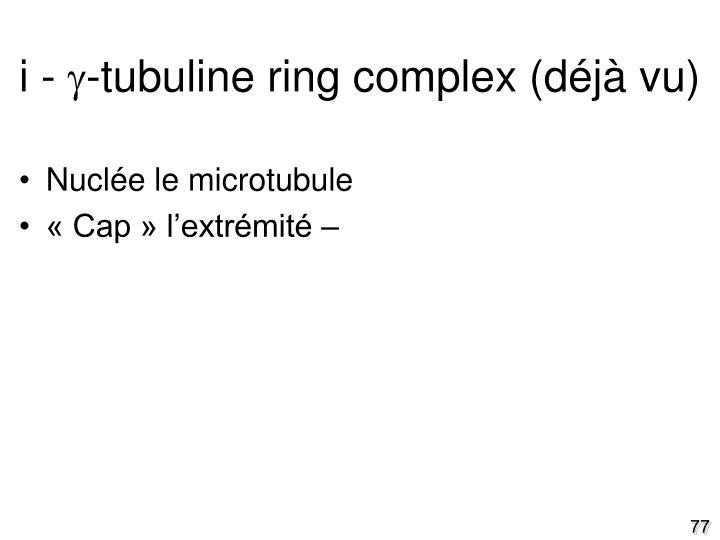 i - -tubuline ring complex (déjà vu)