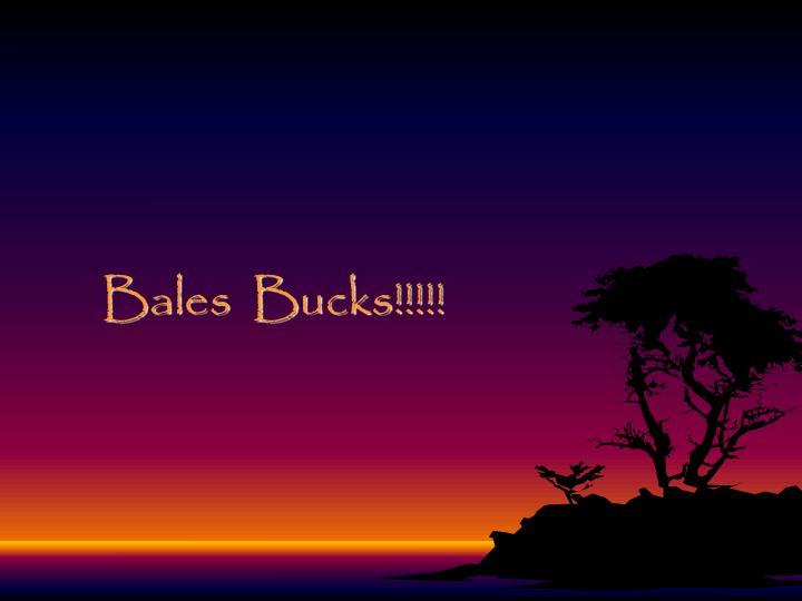 Bales  Bucks!!!!!