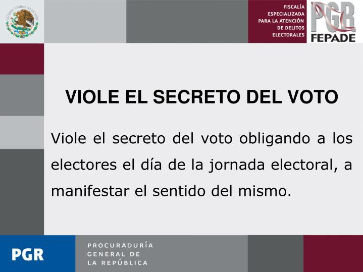 VIOLE EL SECRETO DEL VOTO
