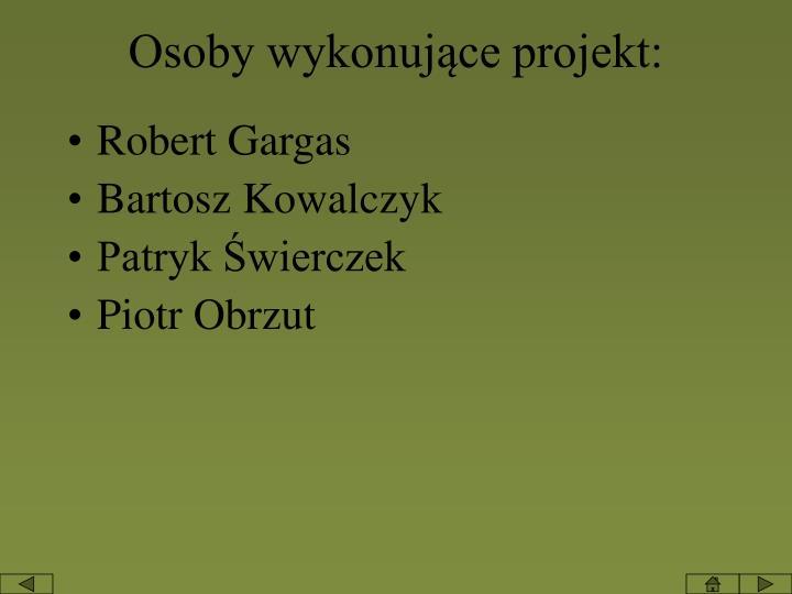 Osoby wykonujące projekt: