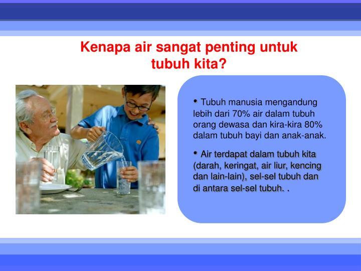 Tubuh manusia mengandung lebih dari 70% air dalam tubuh orang dewasa dan kira-kira 80% dalam tubuh b...