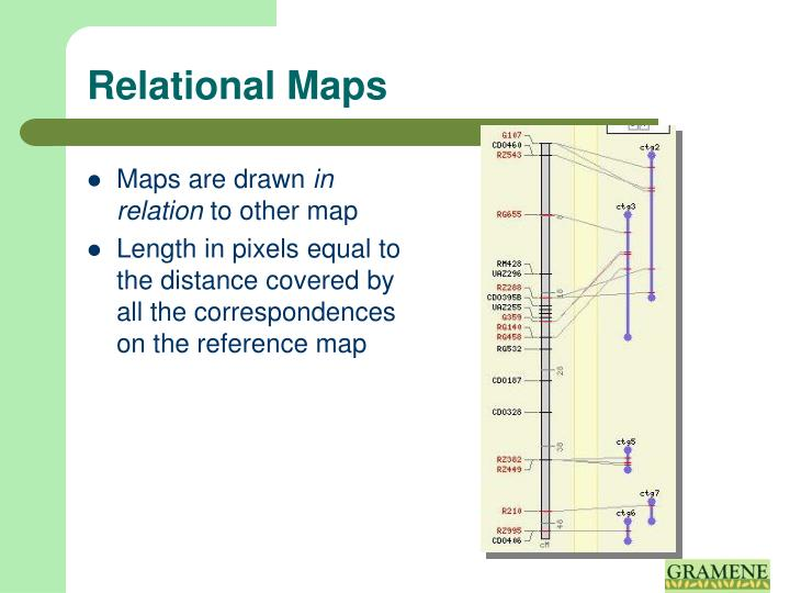 Relational Maps