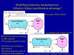 modelling leukaemic haematopoiesis mackey adimy proliferation advantage