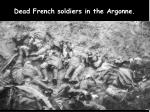 dead french soldiers in the argonne