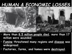 human economic losses