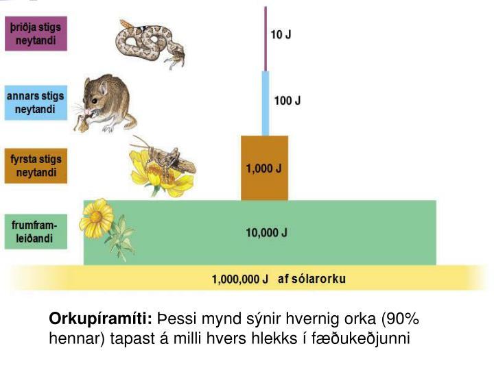 Myndaniðurstaða fyrir orkupíramíti
