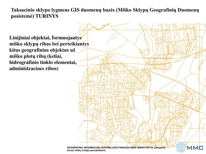 Taksacinio sklypo lygmens GIS duomenų bazės (