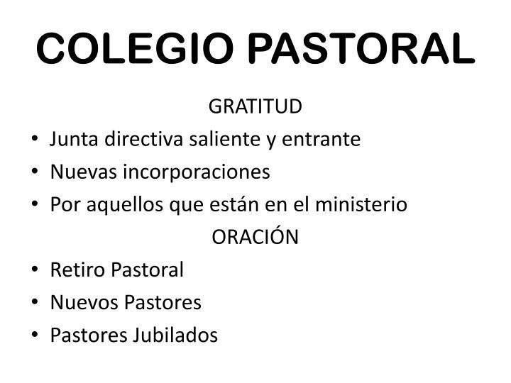 COLEGIO PASTORAL