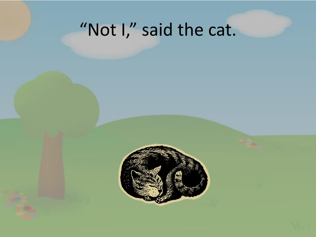 not-i-said-the-cat-l.jpg