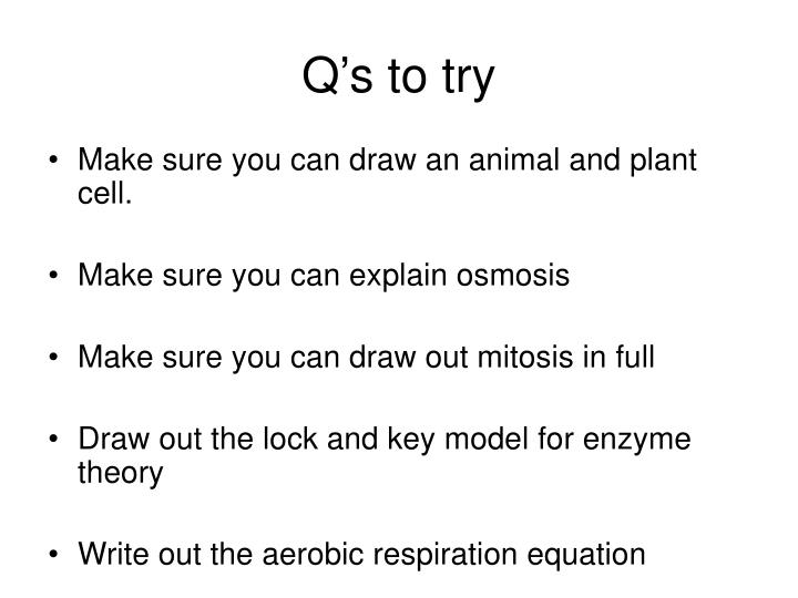Q's to try