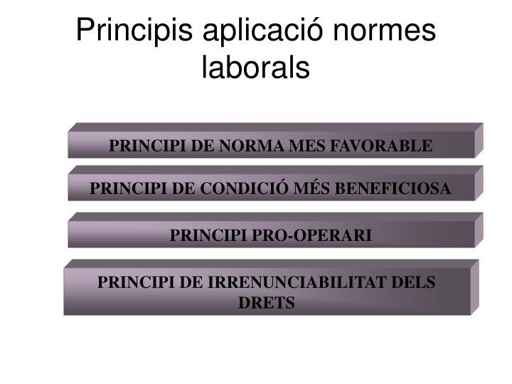 Principis aplicació normes laborals