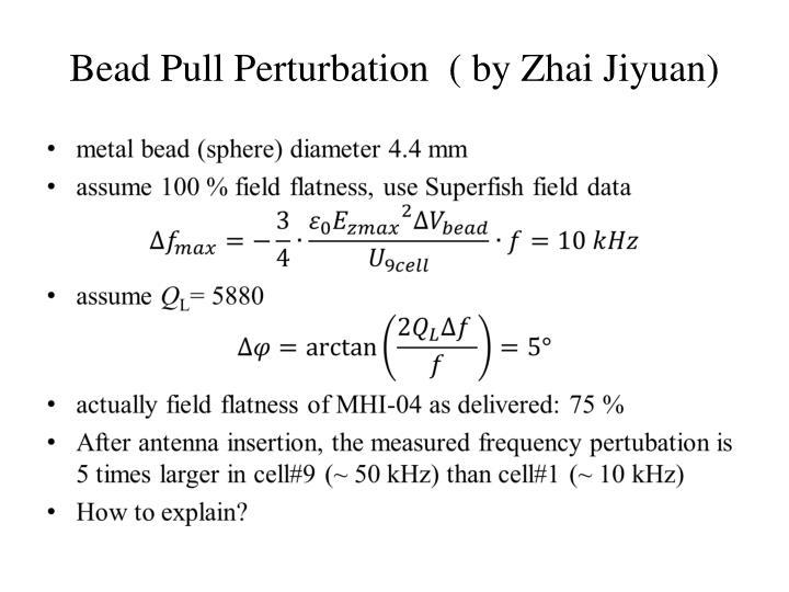 Bead Pull Perturbation