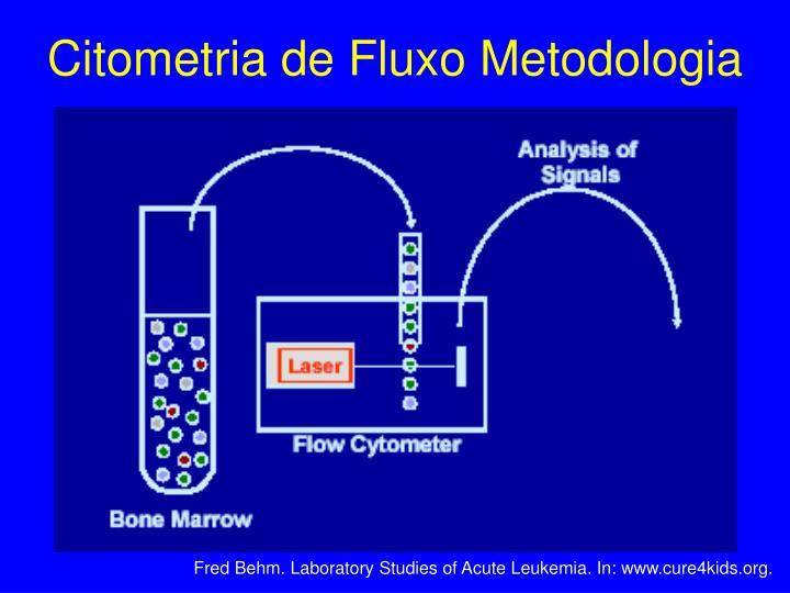 Citometria de Fluxo Metodologia
