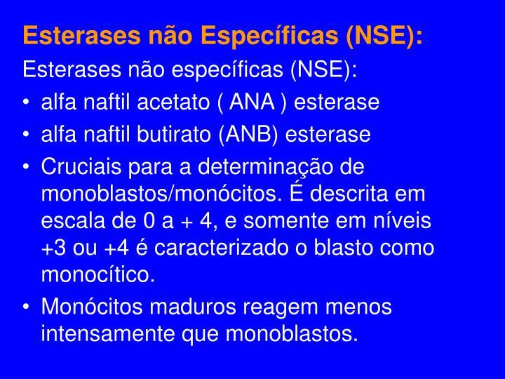 Esterases não Específicas (NSE):