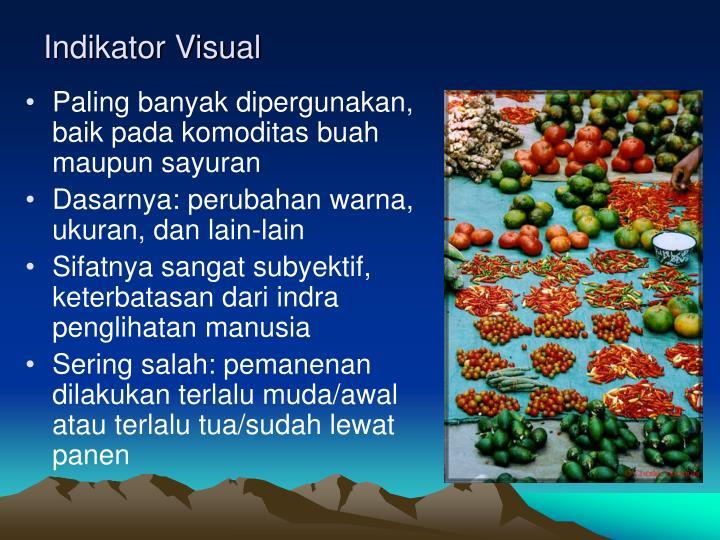 Indikator Visual
