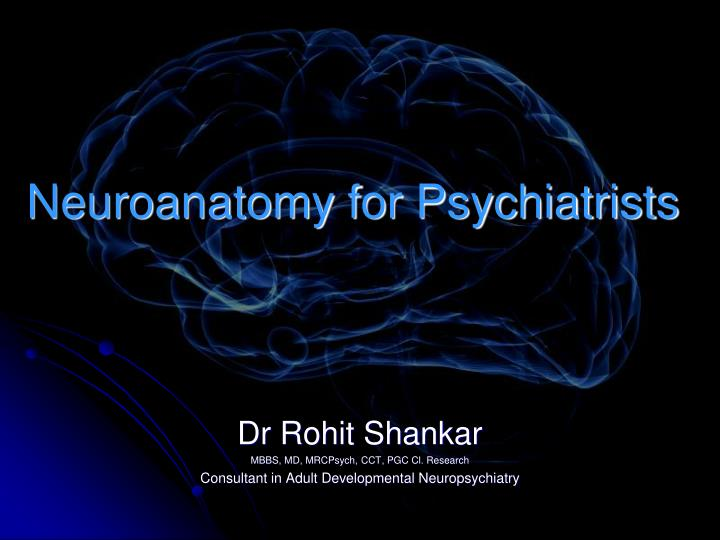 neuroanatomy for psychiatrists n.
