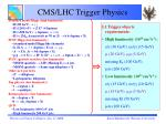 cms lhc trigger physics