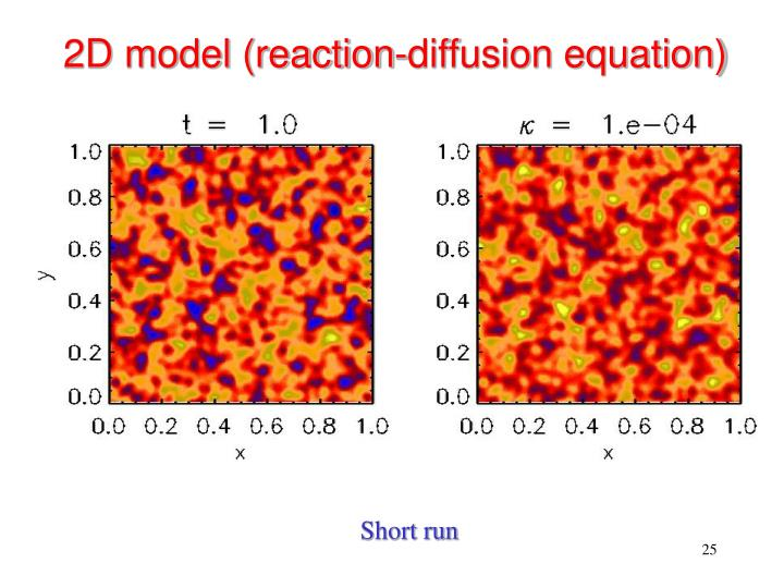 2D model (reaction-diffusion equation)