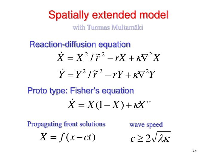 Spatially extended model