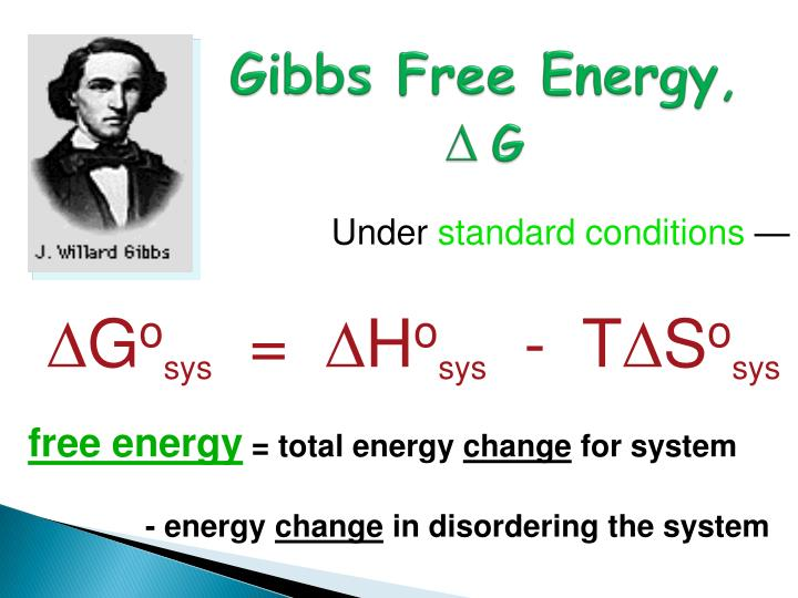 Gibbs free energy g