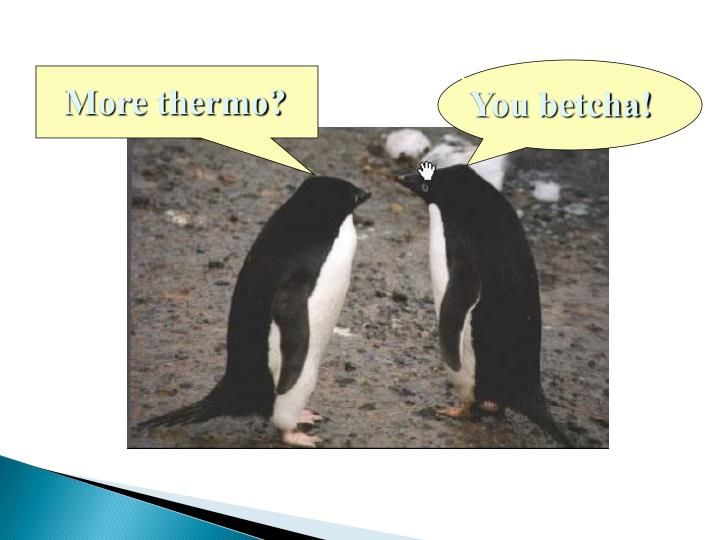 More thermo?