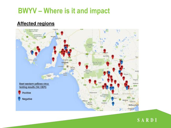 BWYV – Where is it and impact