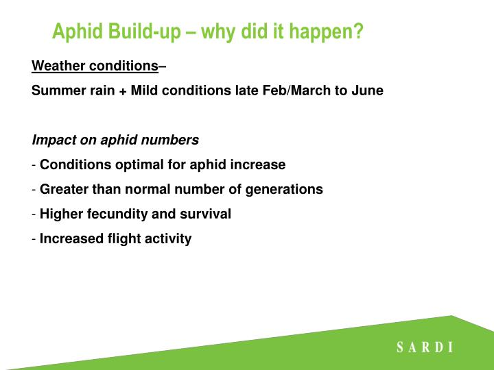 Aphid Build-up – why did it happen?