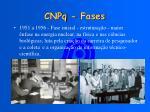 cnpq fases