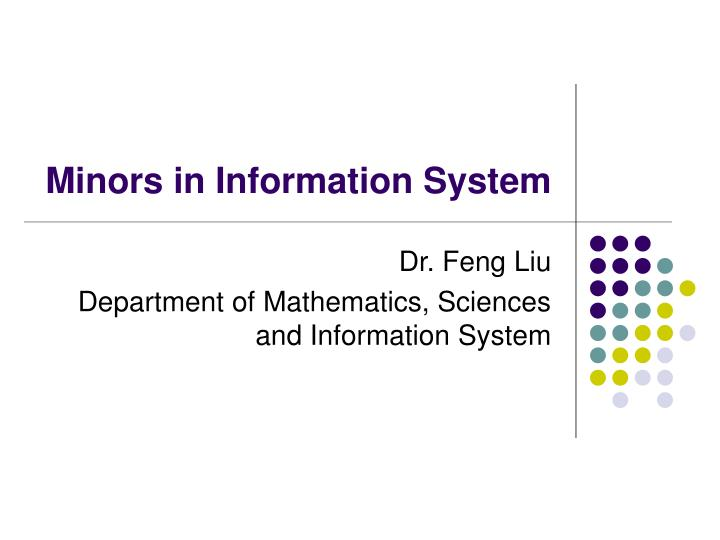 minors in information system n.